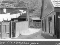 Brinken 59 (1936)