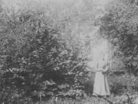 Sommer i Skarihaven (1900)