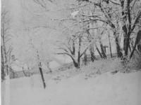 Vinter i Skarihaven