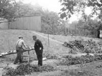 Trefelling i Kampen park (1935)