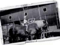 Stig Berg til hest på Sørli Hovedgård (1950)