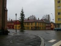 Julegrana på Kampen (2009)