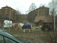 Kampen bondegård mot Telemarksvingen (2007)