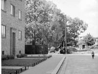 Normannsgata mot parken (1936)